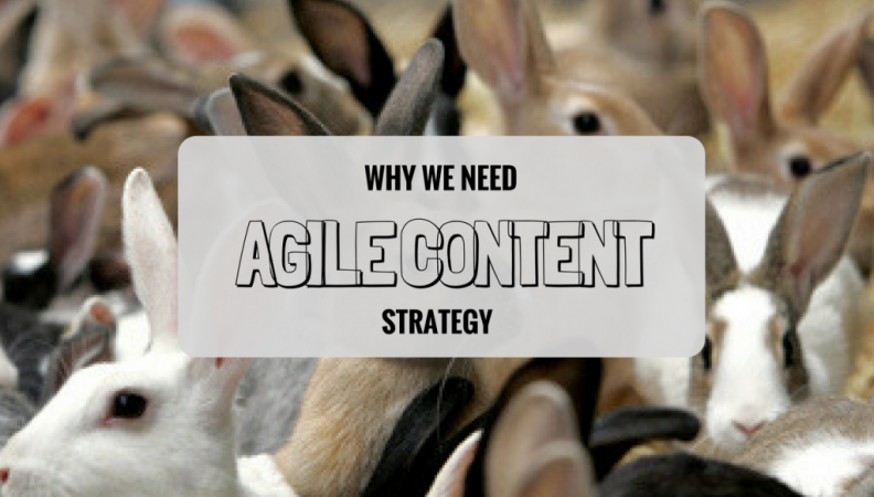 Agile Marketing's Deja Vu Moment: Why We Need Agile Content Strategy
