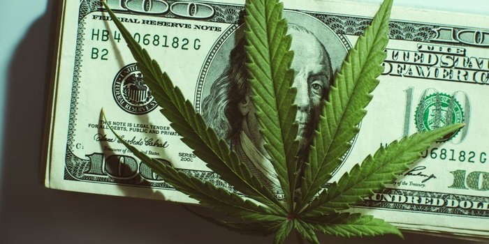How To Navigate the Murky Waters of Cannabis Marketing