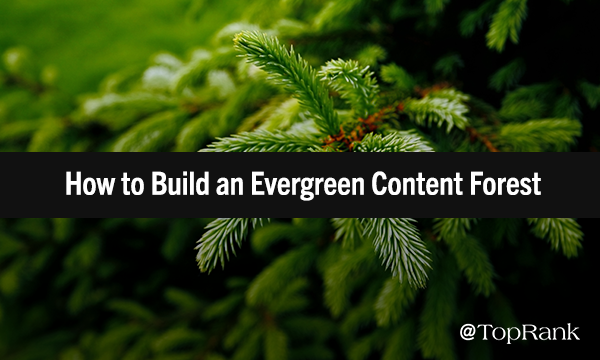 How to Build a Resilient Evergreen Content Marketing Forest1