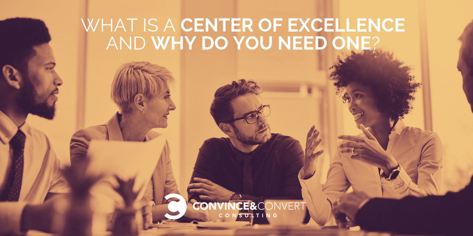 What Is a Center of Excellence and Why Do You Need One?